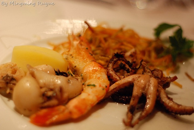 squid-1